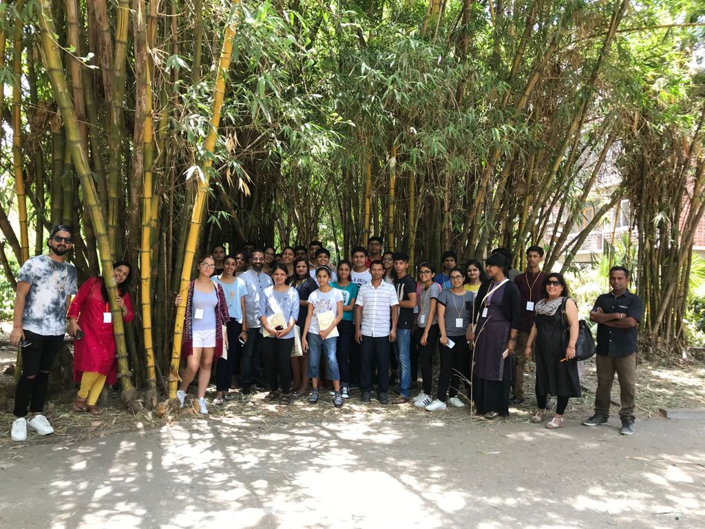 Bamboo – the future material  I & OP Summer workshop  Day 1